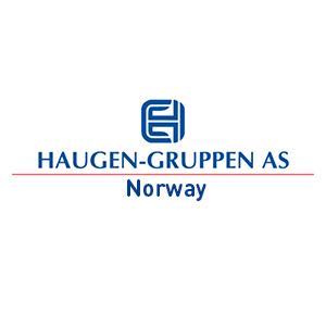 Logo Haugen-Gruppen. Grafikk.